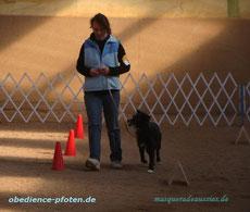 Dare mit 7 Jahren qualifiziert in ihrem 1. Rally-Obedience-Lauf