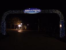 美ら海水族館 入口