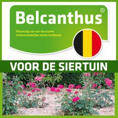 Belcanthus Brabant Wallon