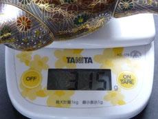 九谷焼通販 おしゃれな急須 茶器 萬古焼 大 加賀のお殿様・お姫様キブン(金花詰)重量の図