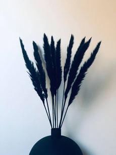 fleurs séchées, fleurs noires