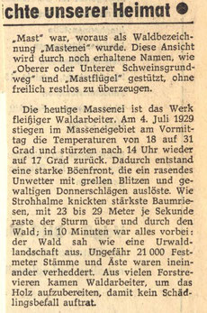 Bild: Seeligstadt Chronik 1981