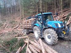 Holz, Reisig Transport