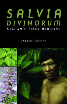 salvia drogue des shamans