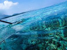 ターコイズブルーの海は透明度抜群!