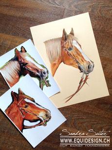 zeichnung ab foto farbe bleistift portrait pferd farbstift kopf