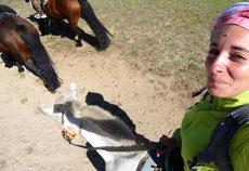 Maîtrisez votre cheval pour les photos en selle !!!