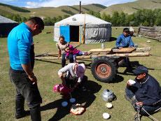 Pause thé au lait dans un camp de yourte nomade