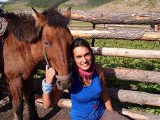 Le cheval mongol
