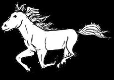 Pferd Galopp Maldocheinschiff Zeichnung
