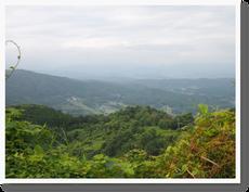 岡山県へ ダーさん 山頂の実家へ②