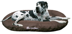 Dog allemand coussin