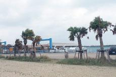 強風が吹き荒れた市内=11日午前、石垣離島ターミナル