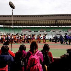 Startaufstellung beim Osaka Women's Marathon