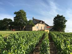 maison en Bourgogne dans les vignes