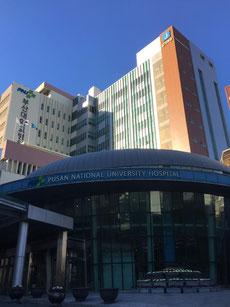 釜山大学附属病院 茨木市 永井歯科医院