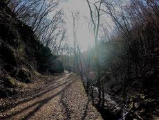 Berglauf Morgenbachtal