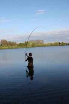 acrocarpe.com pêche à la carpe dans la Somme en No-kill