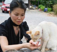 かつての飼い猫 美猫 ちゅら♡と@佐渡島