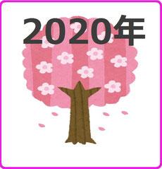 桜が満開 イラスト