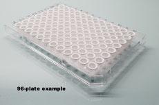 Framestar® 96 PCR plate