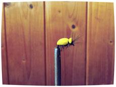 Das gelbe Käfer-Imitat