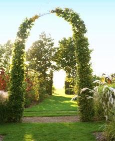 Das Tor zum Feld