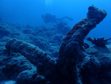 石垣島の海底遺跡
