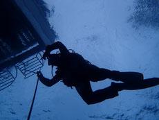 石垣島でリフレッシュダイビング