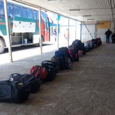 Nos sacs alignés seront reniflés par un chien douanier