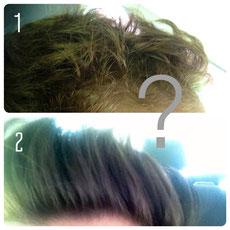 2 Bilder, die nur die Frisuren zeigen um zu erraten, wer auf dem Bild sein könnte.