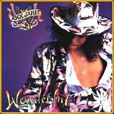 Rick James - 1988 / Wonderful