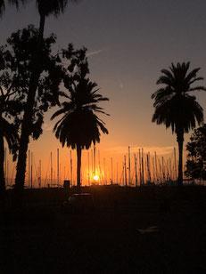 Der Sonnenaufgang am Hafen