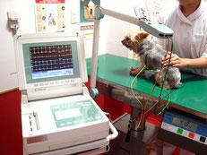心電図検査機