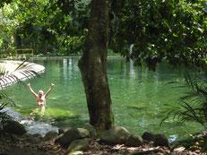 Im Turicentro Zacatecoluca gibt es eine beachtenswerte Anlage: Naturbelassener Dschungel mit angelegten Flüßchen und Balenarios. Glasklares Wasser strömt durch die gesamte Anlage, so dass man überall im erfrischend kühlen Wasser baden kann.