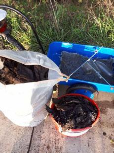 jede Menge Müll hat Olaf in den Bruchwiesen gesammelt