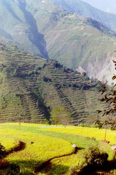 Unterwegs nach Pokhara