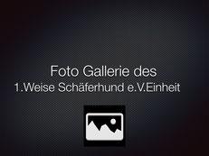 1.WS Einheit Fulda 2014