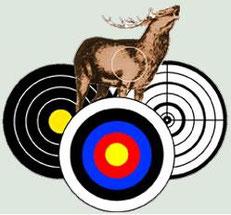 Histoire et disciplines du tir à l'arc