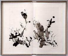 Bibliophilie Bernard Noël Zao Wou-Ki  Dumerchez Bernard Editions Editeur