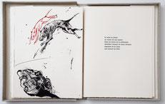 Bibliophilie Visages de l'exil Catherine Zittoun Vladimir Veličković Dumerchez Bernard Editions Editeur