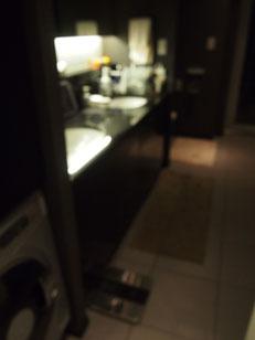 洗面所もレストルームも2つずつあり、広々。