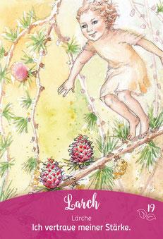 Irene Drexler Bachblüten-Botschaften: Lärche