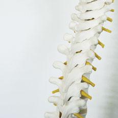 Chiropraktik in Weil der Stadt, Behandlung bei Rückenschmerz