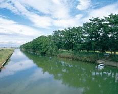 岩沼市 貞山運河