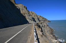 Neuseeland - Motorrad - Reise - Cape Palliser - Seelöwen