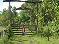養蜂場の入口看板の周りも緑豊かになりました。