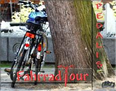 Fahrradtouren, Pedalis