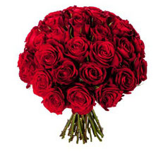 roses rouges mariage