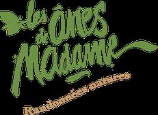 Les ânes de Madame, randonnées accompagnées avec des ânes au coeur des châteaux de la Loire et de la Sologne - www.lesanesdemadame.com